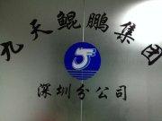 九天鲲鹏管理咨询(深圳)有限公司