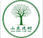 山东建树企业管理咨询有限公司