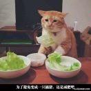 重庆开林集团
